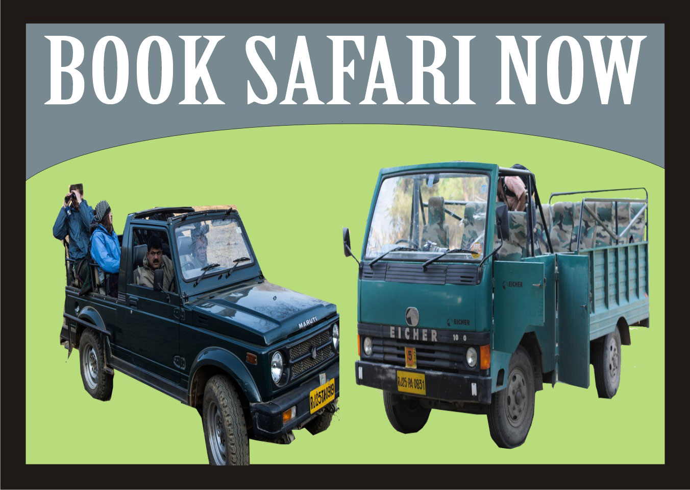 Book a safari