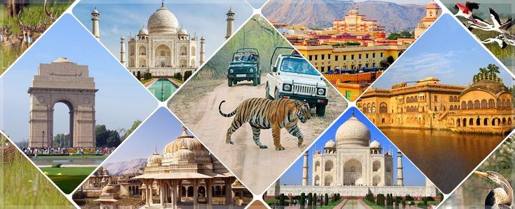 Kingdom of India  trip
