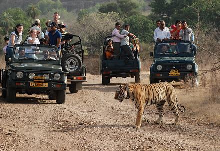 Jaipur-Ranthambhore Weekend trip